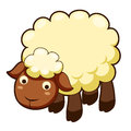 Cute sheep  Stock Image