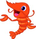 Cute shrimp cartoon presenting illustration of Royalty Free Stock Photography