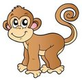 Cute small monkey Royalty Free Stock Images