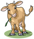 Cute smiling cow. Cartoon style Stock Photography