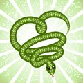 Cute snake (symbol of 2013 year) Royalty Free Stock Photos