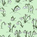 Cute snowdrops flowers seamless pattern. Beginning of spring