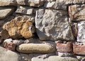Cute sparrow looking in camera facing a crack between stones Royalty Free Stock Photo