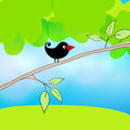 Cute spring bird illustration vector hand drawn style of meadow with sitting on a branch Royalty Free Stock Images