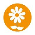 Cute sunflower garden isolated icon