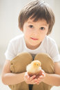 Cute sweet little child, preschool boy, playing with little chic Royalty Free Stock Photo