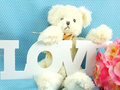 Cute teddy bear concept valentine day on blue polka dot background and artificial rose flower Royalty Free Stock Images