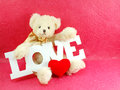 Cute teddy bear concept valentine day on pink background Stock Photos