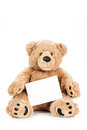 Cute teddy bear holding blank board white Royalty Free Stock Photos