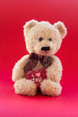 Cute teddy bear holding a heart little Stock Images