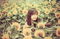 Cute Thai girl in the middle of beautiful sunflower field in vin Royalty Free Stock Photo