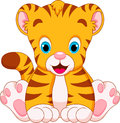 Cute tiger babies cubs are and adorable sitting Royalty Free Stock Images