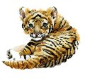 Cute tiger cub watercolor illustration. wild baby animals series Royalty Free Stock Photo