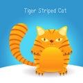 Cute tiger stripes cat Stock Photo