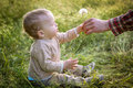 Cute Toddler boy looks at the nature Royalty Free Stock Photo