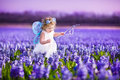 Cute toddler girl in fairy costume in a flower field Royalty Free Stock Photo