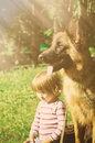 Cute toddler girl sitting with Young German Shepherd Dog in a field under bright sun light. Royalty Free Stock Photo
