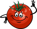Cute tomato vegetable cartoon illustration Royalty Free Stock Photo