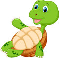 Cute tortoise cartoon relaxing illustration of Royalty Free Stock Photography