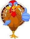 Cute turkey