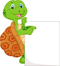 Cute turtle cartoon with blank sign illustration of Stock Photos