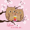 Cute two owls sitting on a tree. Owlets drinking cocktail. Gomantic background. Vector illustration.