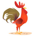 Cute vector cartoon Rooster isolated on white background.
