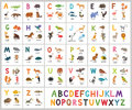 Cute vector zoo alphabet. Abc animals