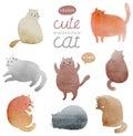 Cute watercolor cats set
