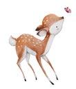 Cute watercolor deer