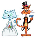 Cute wedding cats cat coupple getting married Royalty Free Stock Photo