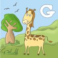 Funny giraffe at the zoo. Cute animal alphabet for ABC book. Vector illustration of cartoon animals. Giraffe for F