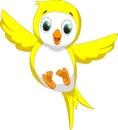 Cute yellow bird cartoon illustration of happy on white Royalty Free Stock Photography
