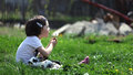 Cute young girl with rabbit blowing a dandelion Royalty Free Stock Photo