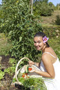 Cute young woman in her garden female gardener holding fresh picked cherry tomatoes beautiful organic Royalty Free Stock Photography