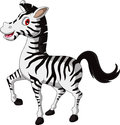Cute zebra cartoon walking illustration of Royalty Free Stock Image