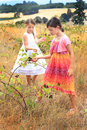 Cuties eating blackberries two cute little girls in nice dresses in a field of tall grass picking and shallow depth of field Stock Images