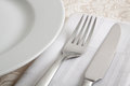 Cutlery with portion of dinner plate Royalty Free Stock Image
