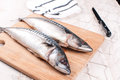 Cutting board raw mackerel knife preparing Royalty Free Stock Photo
