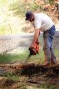 Cutting Firewood Royalty Free Stock Photo