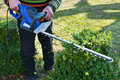 Cutting hedge person holding trimmer Stock Photography