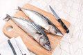 Cutting preparing fresh mackerel fish whole Royalty Free Stock Image