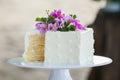 Cutting the wedding cake Royalty Free Stock Photo