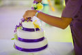 Cutting the wedding cake a bride and a groom is their Royalty Free Stock Photo