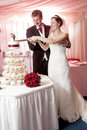 Cutting the wedding cake just married couple a Royalty Free Stock Photo