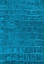 Cyan reptile leather imitation texture Stock Image