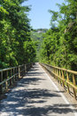 Cycle lane of the Adige valley Royalty Free Stock Images