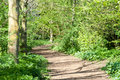Cycle path in spring sunshine Royalty Free Stock Photo