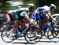 Ciclo raza