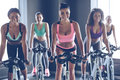 Cycling beauties young beautiful women with perfect bodies in sportswear looking at camera with smile while at gym Stock Photos